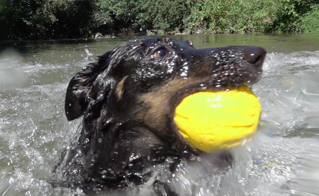 thumb sport acquatici